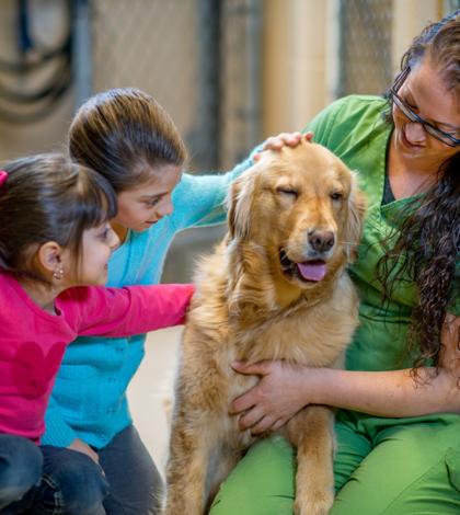 Animal Shelter Gets Grant